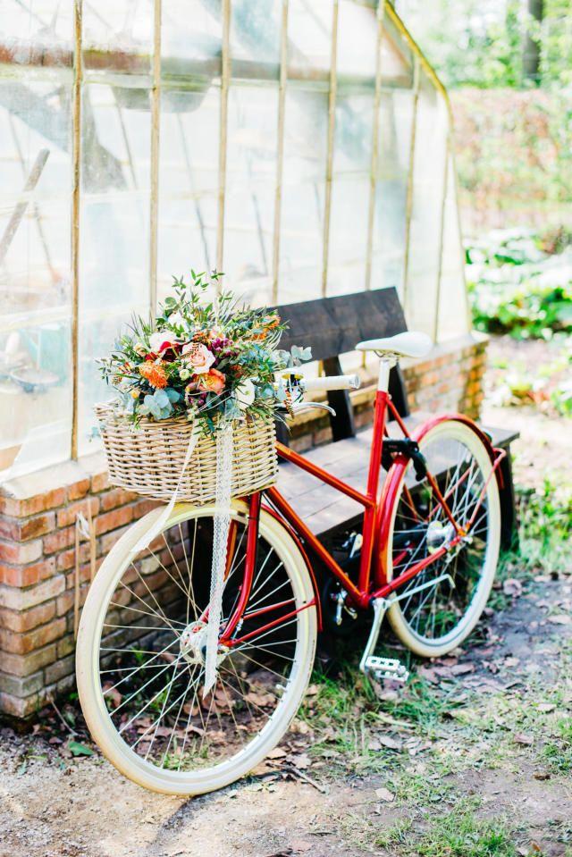 Credit: Mariska Staal Fotografie - wiel (voortbeweging), geen persoon, motorfiets, zomer, bloem (plant), hout, natuur, zitting (meubels), tuin, buitenshuis, blad