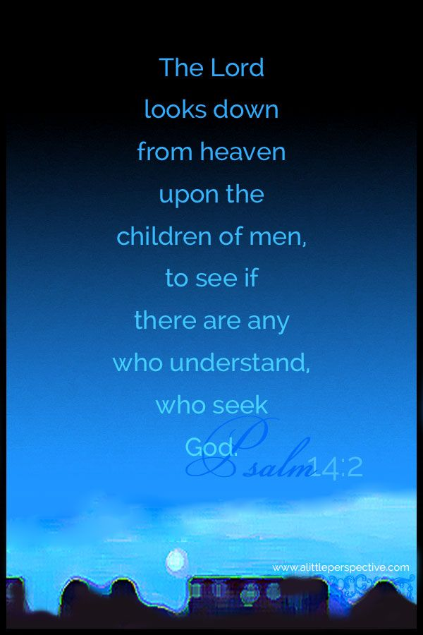 The Lord looks down from heaven upon the children of men, to see if there are any who understand, who seek God. Psa 14:2 <3