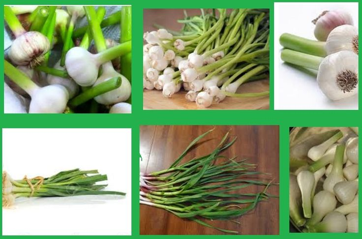 Vegetables are generally beneficial when it comes to combating cancer, but one of them stands out for its extraordinary powers; garlic. According to the American Institute for Cancer Research, incorporating garlic into your diet is the best thing you can do for your overall health, as well as successful cancer treatment. Apart from cancer, garlic …