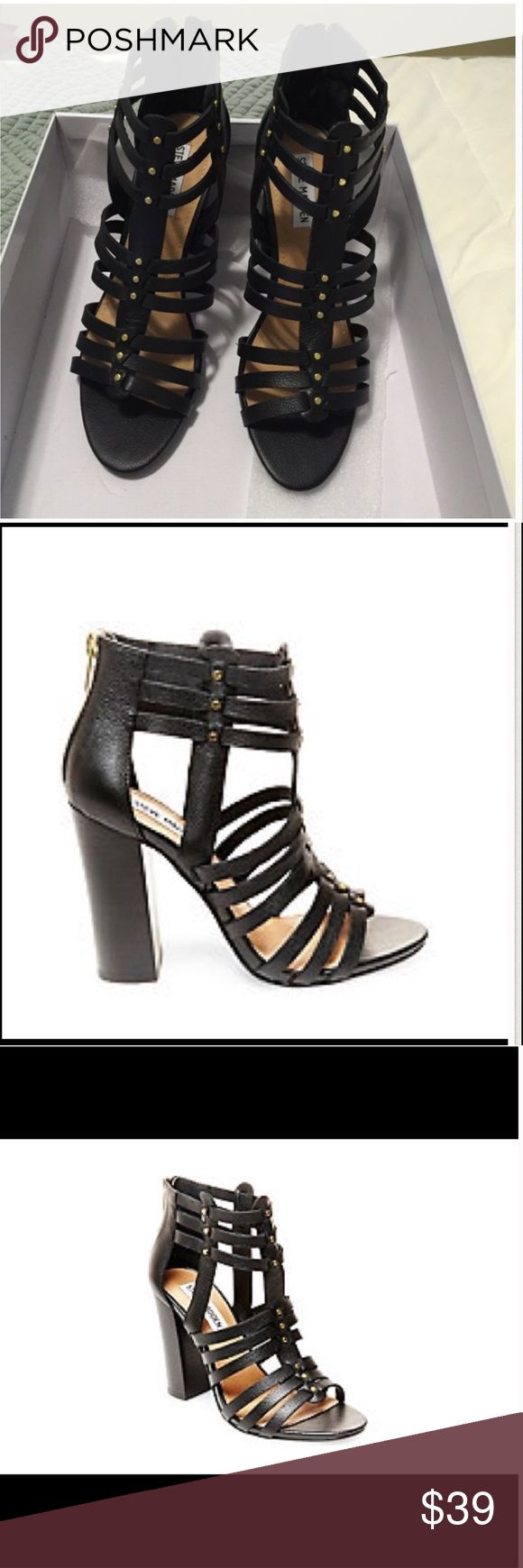Bnwt Steve Madden black heel size 8NWT Perfect for summer and fall and brand new in box Steve Madden black Sofia leather heels with gold details in size 8 Steve Madden Shoes Heels