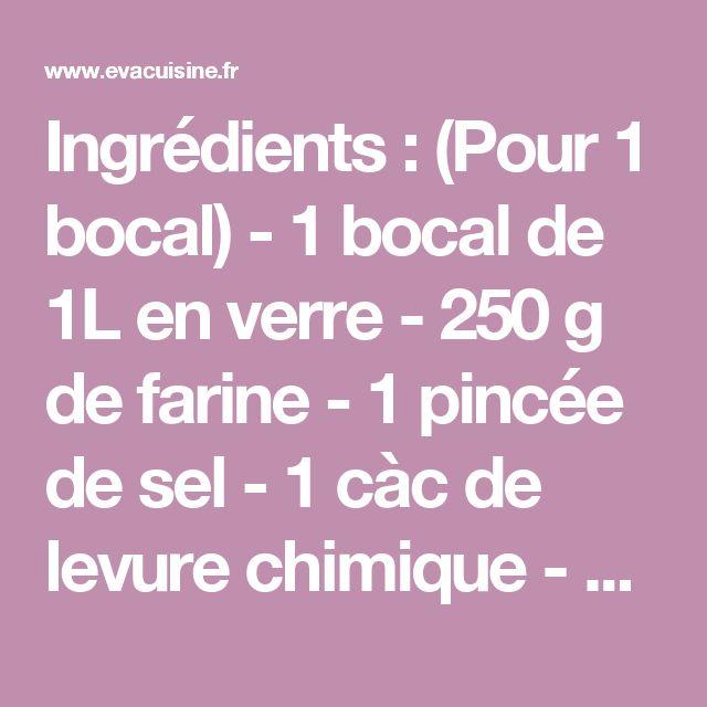 Ingrédients : (Pour 1 bocal) - 1 bocal de 1L en verre - 250 g de farine - 1 pincée de sel - 1 càc de levure chimique - 80 g de flocons d'avoine - 100 g de sucre roux - 100 g de sucre en poudre - 100 g de pépites de chocolat - 80 g de noix, noisettes ou amandes - 50 g de m&m's (facultatif, mais ça rajoute de la couleur !) Recette : Lavez le bocal et séchez-le à l'aide d'un torchon. Dans un saladier, mélangez la farine, la levure chimique et le sel. Concassez grossièrement les noix (ou les…