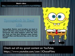 """Spongebob In Real Life is very kind-hearted and innocent, and very rarely acts openly mean to anyone, even his enemies. He is a very selfless and loyal person, especially towards those close to him. His selfless nature is most notably shown in """"Best Day Ever,"""" where he sacrifices his """"perfect day"""" to help his friends. Despite his well-meaning intentions, SpongeBob's actions often annoy and cause trouble for those around him, most notably his next-door neighbor, Squidward Tentacles."""