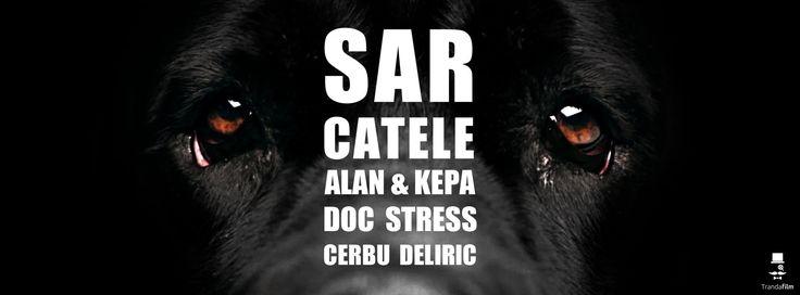 ALAN & KEPA , Doc , Stres, Cerbu', Deliric - Sar Catele [Official Video]