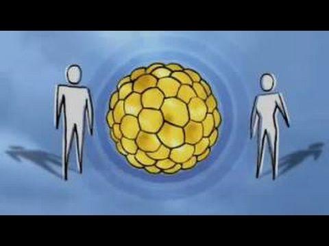 (1) NOVA SCIENCE NOW - STEM CELLS - PBS NOVA DOCUMENTARY - YouTube
