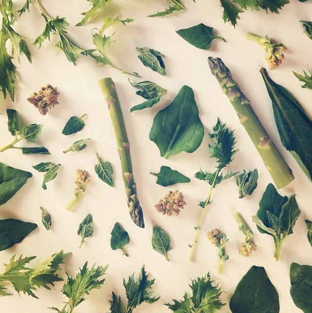 Beautiful Food Collages From Instagram by Julie Lee