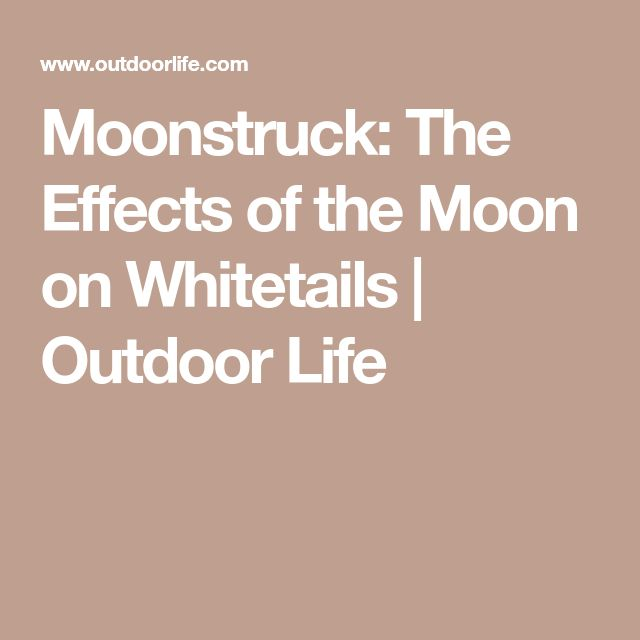 Moonstruck: The Effects of the Moon on Whitetails | Outdoor Life