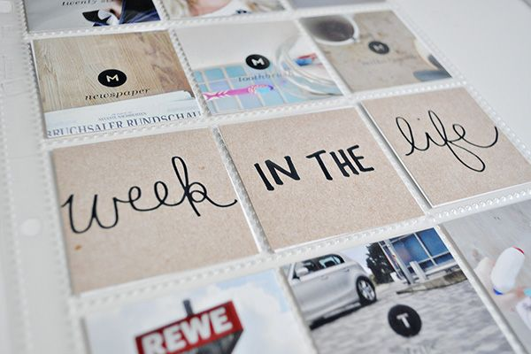 caylee's project life | week 34 | paislee press