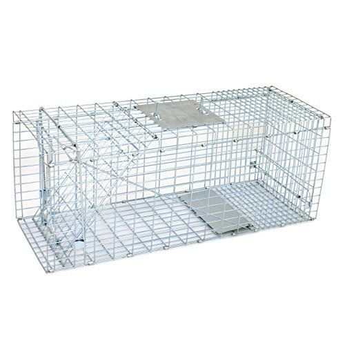 "ZENY Live Animal Cage Trap 24""/32"" Steel Cage Catch Release Humane Rodent Cage for Rabbits, Stray Cat, Squirrel, Raccoon, Mole, Gopher, Chicken, Opossum, Skunk & Chipmunks   http://huntinggearsuperstore.com/product/zeny-live-animal-cage-trap-2432-steel-cage-catch-release-humane-rodent-cage-for-rabbits-stray-cat-squirrel-raccoon-mole-gopher-chicken-opossum-skunk-chipmunks/?attribute_pa_size=32-inch"