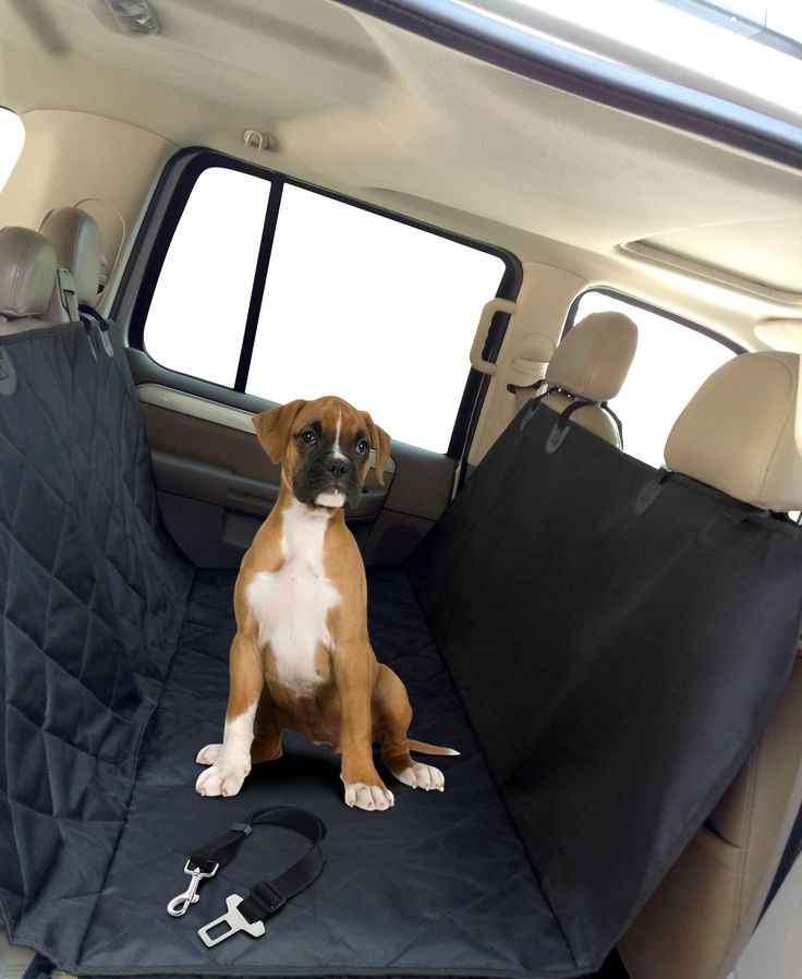 Amazing Car Seat Cover + Seat Belt.  It will protect your car seats from dander, spills, claw marks and dog hair. It includes Seat Belt to keep your dog Safe while traveling.