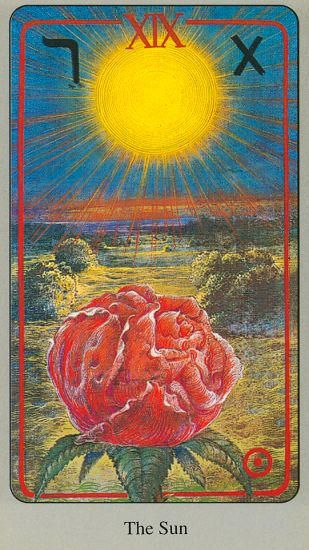 For November 10: This Sun card melts away your defenses and helps you shine  your magnificent bright light. When you find your true direction you will bloom for all to see. Your confidence will set a good example for others and encourage them to set out of the shadows too. Step boldly into the light! From HAINDL TAROT