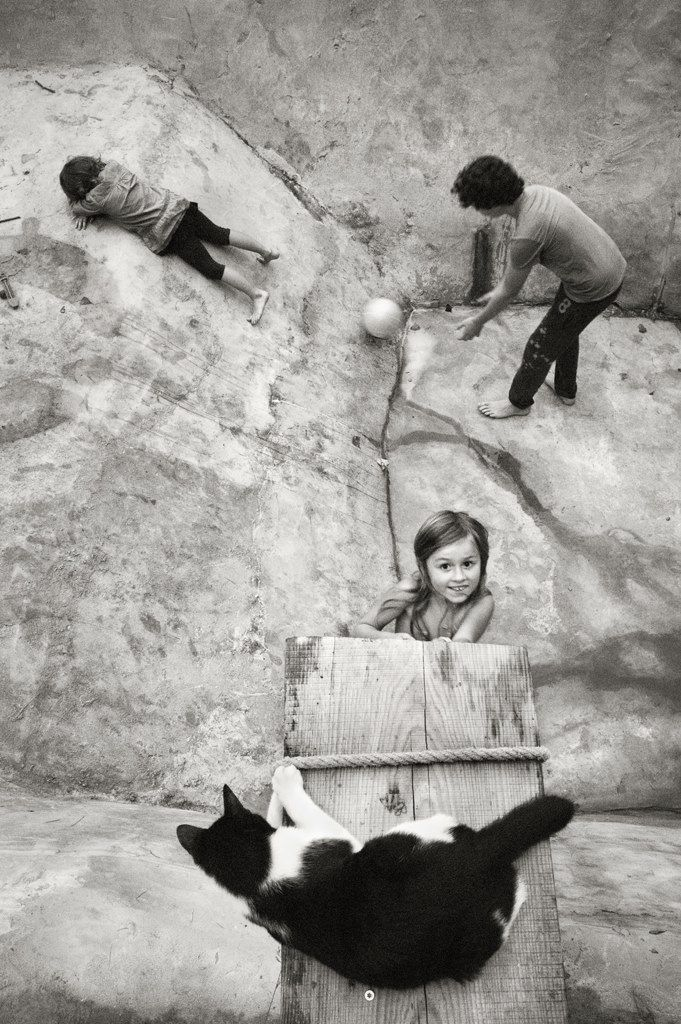 Alain Laboile Quel beau cadrage de photo, avec le point de vue du chat
