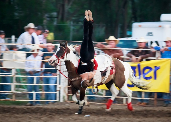 1000 Images About Rodeo On Pinterest Barrel Racing