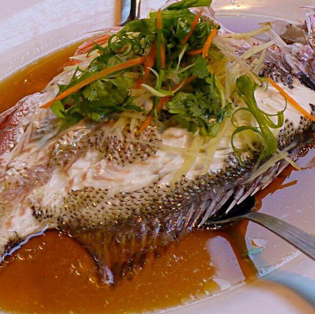 市場にて怒濤の活魚の中から、イカと貝と共にピックアップ! 今回もトロトロのふんわり、そしてジューシーでございました ソースは酒、醤油、生姜、シンシャオ酒、うすくXO醤と豆鼓で。 夫が蒸して私がソース。 先に蒸貝をつまみながら、ちょっとお肉もつまみながら飲みながらw本日のメインでございます - 155件のもぐもぐ - 蒸し活魚またしても名前は分からずもバリうま! by ふか