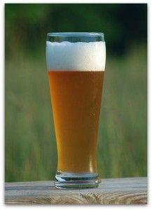 Beer Trivia: Uncle John's Beer-Topia