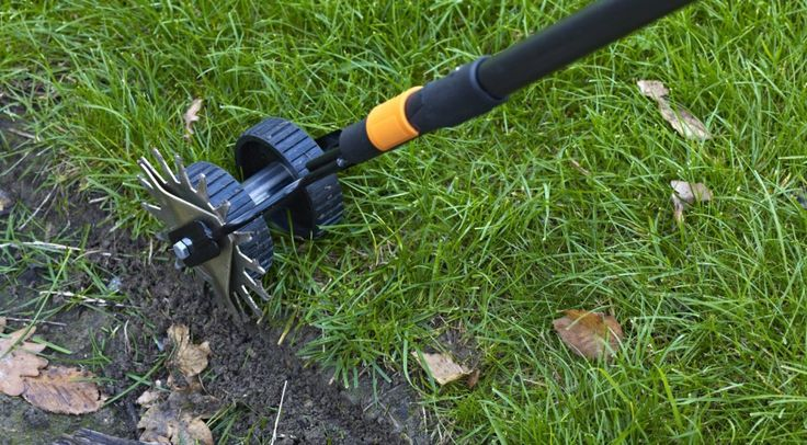 What's the best manual lawn edger?