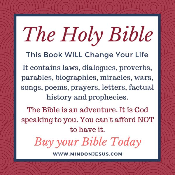 This article gives you information on - What is the Bible, Who wrote the Bible and where you can buy a Bible and read the word of God.