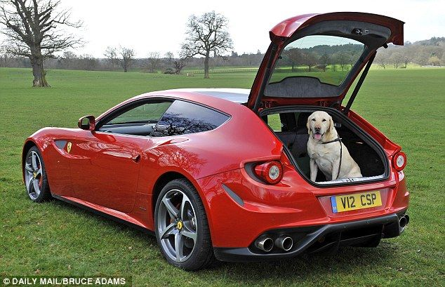 The brand new £230,000 Ferrari FF, with plenty of room for your dog!