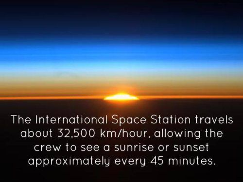 fun-science-facts-