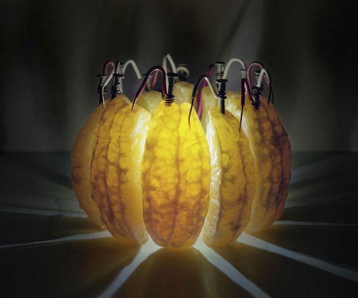 Back to Light de Caleb Charland, s'étend sur un projet scientifique de l'école primaire classique, la batterie de pommes de terre.