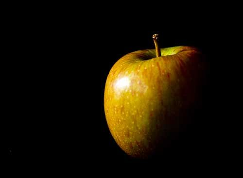 this picture of still life is by Helen Pakeman, This picture of the apple is very good. The dark background makes its look even better, as the black shades on the apple make it look like there isn't a whole apple
