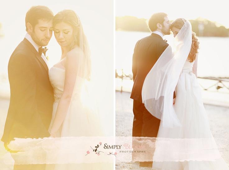 sarasota florida wedding photography, simply bloom photgraphy