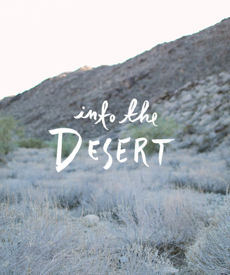 Into the Desert     The Fresh Exchange