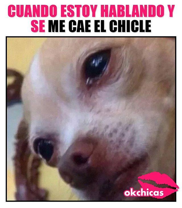 Ay Mi Chicle Memes Divertidos Fotos De Risa Chiste Meme