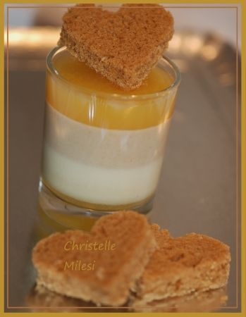 Panna cotta orange et pain d épices