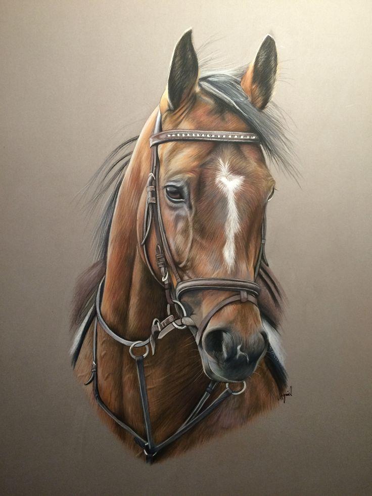dessin de cheval réalisé au pastel d'aprés photo