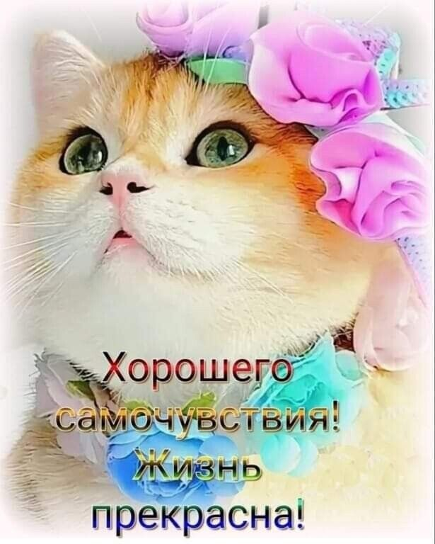 Odnoklassniki Positive People Coffee Images Positivity