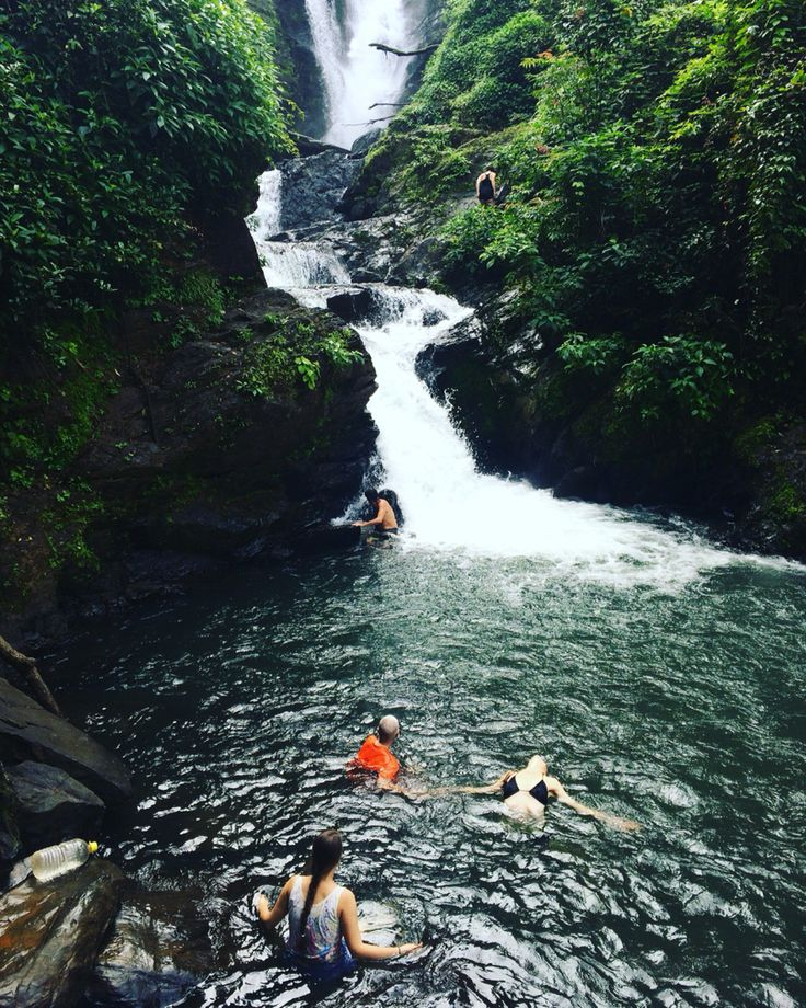 Waterfalls in an Indian jungle make the heart sing #waterfalls #india #jungle