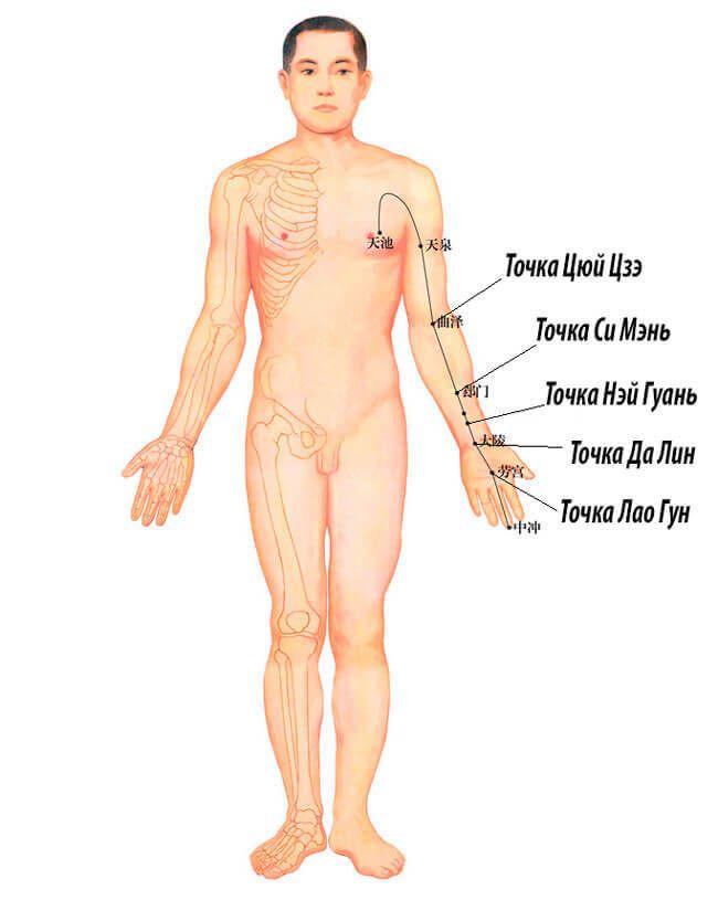Простукивание энергетического канала перикарда восстановит здоровье и продлит жизнь