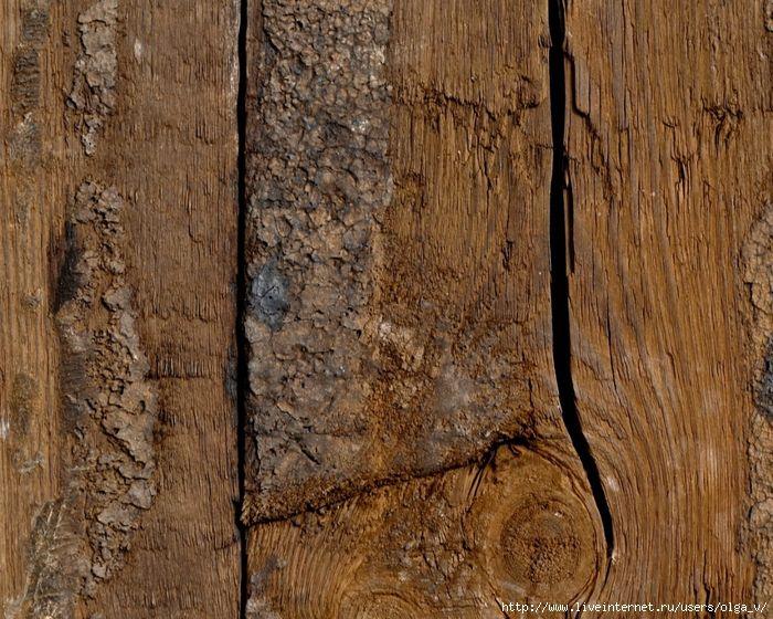 Фон из древесины. Обсуждение на LiveInternet - Российский Сервис Онлайн-Дневников