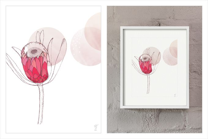 Art print: mixed media / illustration / ink drawing of a pink protea flower by Doeksisters