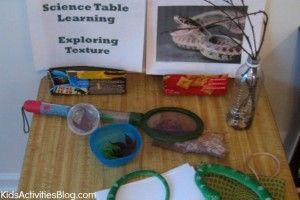 Science Table: Hands On, Interactive The Ft Worth is doing a nature trade post...you bring in items from nature and trade them for something in their collection.