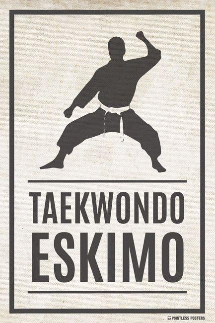 Taekwondo Eskimo Poster