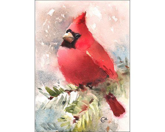 Watercolor Cardinal  Original Bird Painting 5 x 7 by CMwatercolors, $90.00
