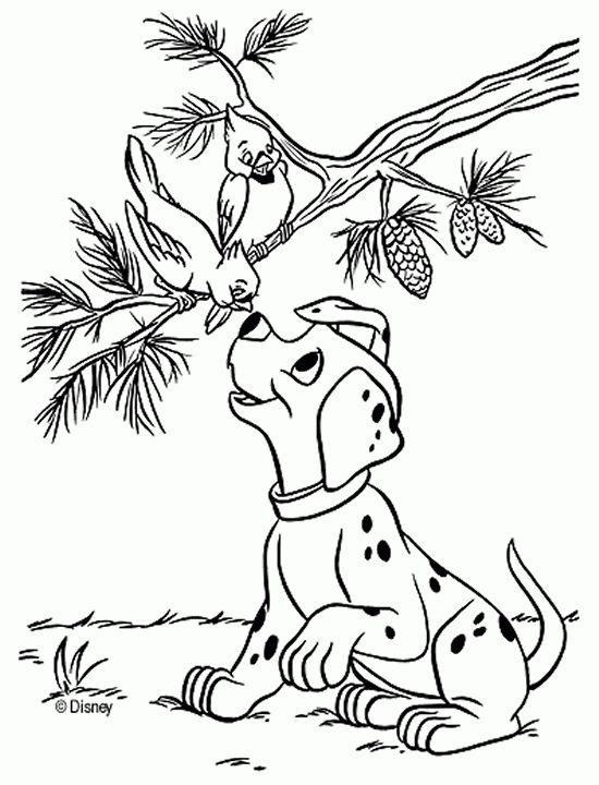 character coloring and activity pages dalmatian with a bird