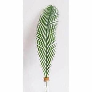 Feuille de palmier Cycas H 60 cm Plastique pour exterieur D 12 cm superbe - Achat / Vente fleur artificielle Plastique - Cdiscount