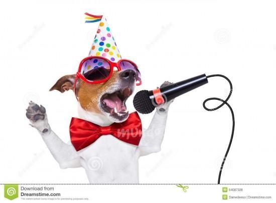 jack russelel honden afbeeldingen | Ojo inflamado - Foros de Jack Russell Terrier - Pag.9 - mundoAnimalia ...