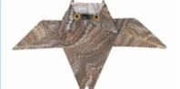 How to Fold a Paper Owl With a Dollar Bill