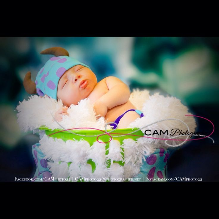 Monster inc theme photo shoot baby boy mini session sully newborn