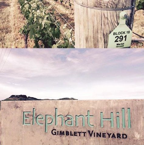 Signs and wines of Gimblett Gravels