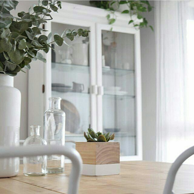 WHITE TIMBER PLANTER ⚫SHOP ONLINE ⚫www.thesecretdoordecor.com ⚫ (link in bio) 📷 and styling by the gorgeous @kerryann_stylist - 👌🏻 #Regrann  #thesecretdoordecor  #melbourne #sydney #interiordecorating #scandinaviandesign #modern #homestyle #homewaresonline #handmadeinaustralia #handmade #smallbusiness #Regrann