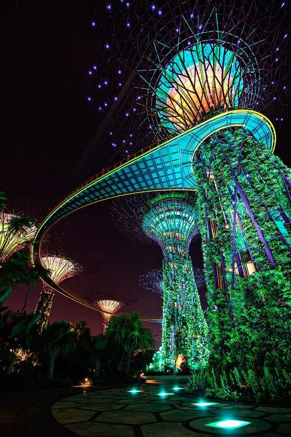 Gardens by the Bay, Marina Bay, Singapore....
