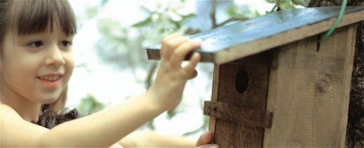 Hemmagjord fågelmat – torka bär till sångfåglarna - Augusti, Sommar, Fruktträdgård, Träd Och Häckar
