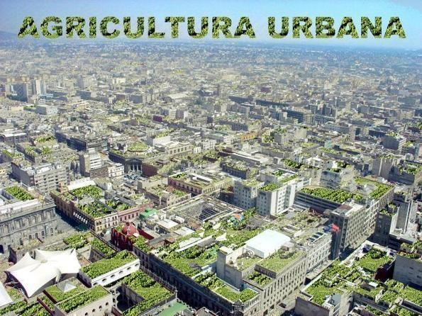 Agricultura Urbana | Circula México