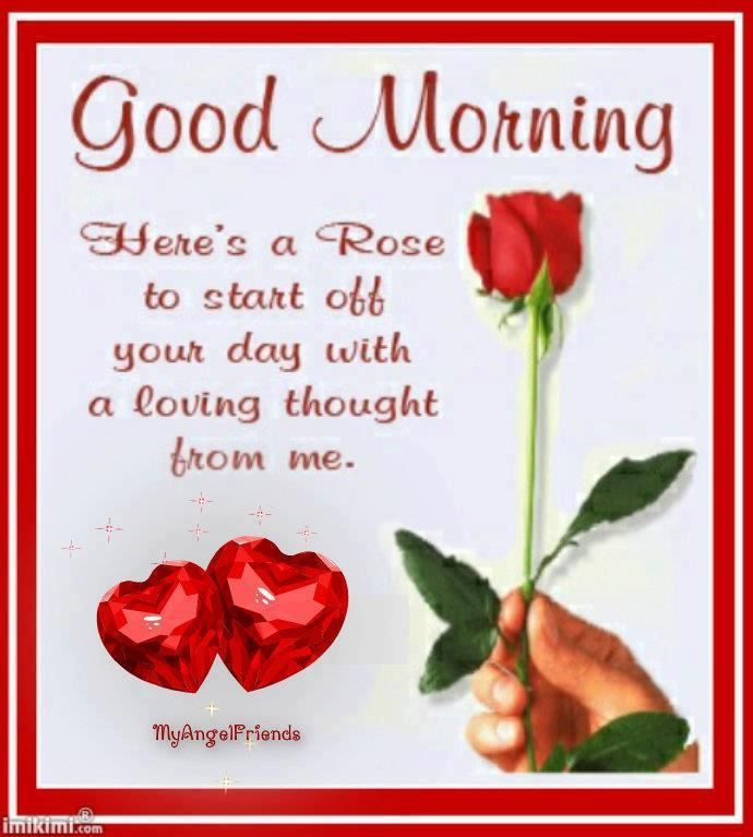 Good Morning Here's a Rose to start off your day..... greetings good morning red rose good morning greeting good morning quote good morning poem good morning blessings good morning friends and family good morning coffee