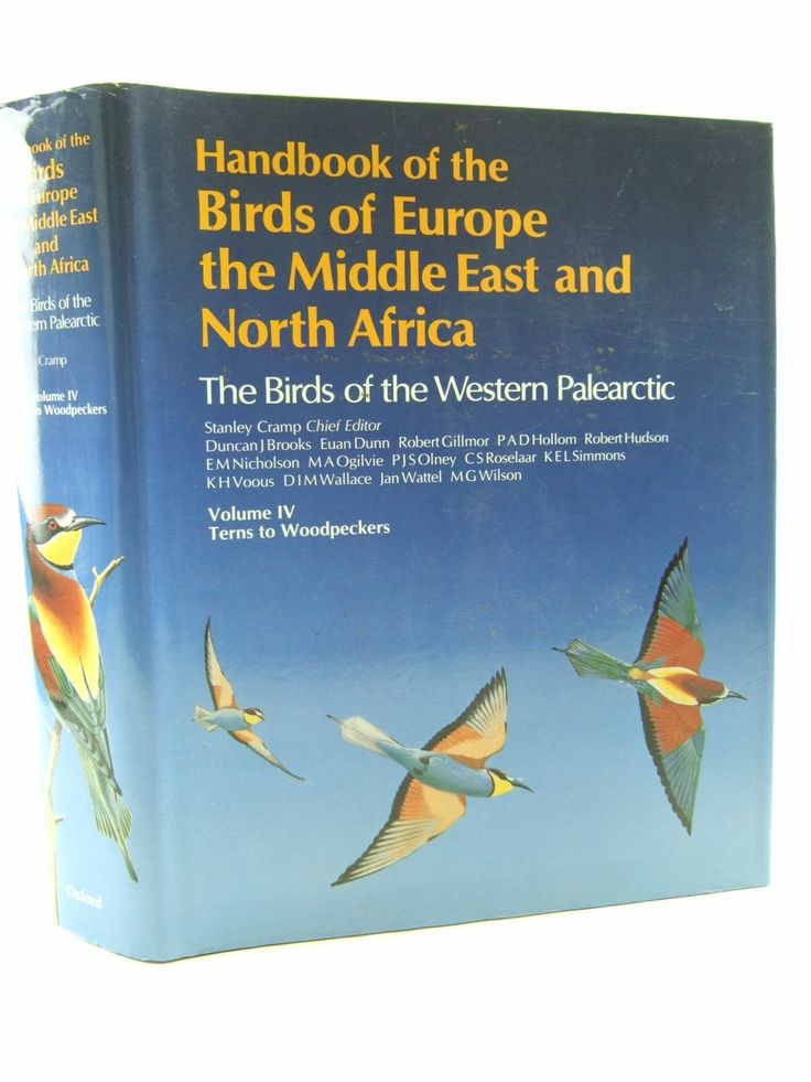 Volume 4 - Handbook of the Birds of Europe, the Middle East, and North Africa: Terns to Woodpeckers.