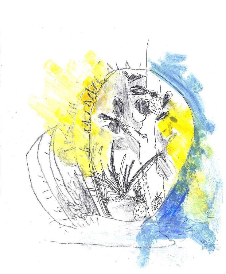#worklena27 #illustration #cactus #magazine #cover #nature #plants #drawing #america #иллюстрация #арт #кактусы #латинскаяамерика #обложка #рисунок